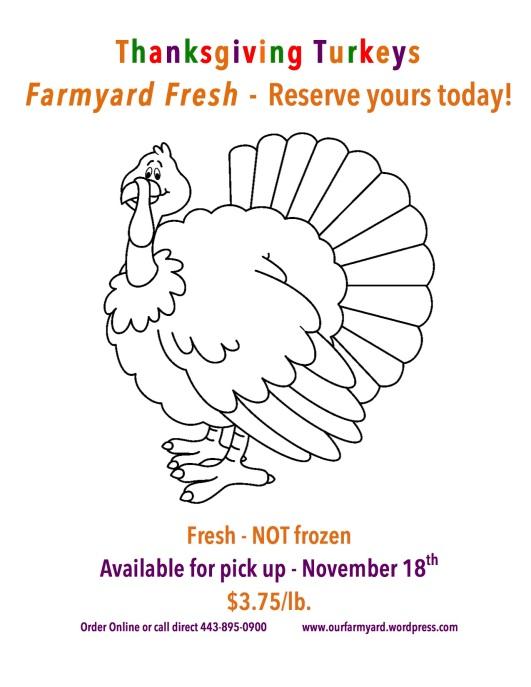 flyer Farmyard Fresh Thanksgiving Turkey